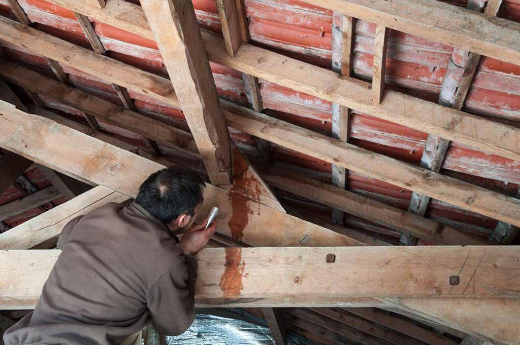 inspecting water leak from roof