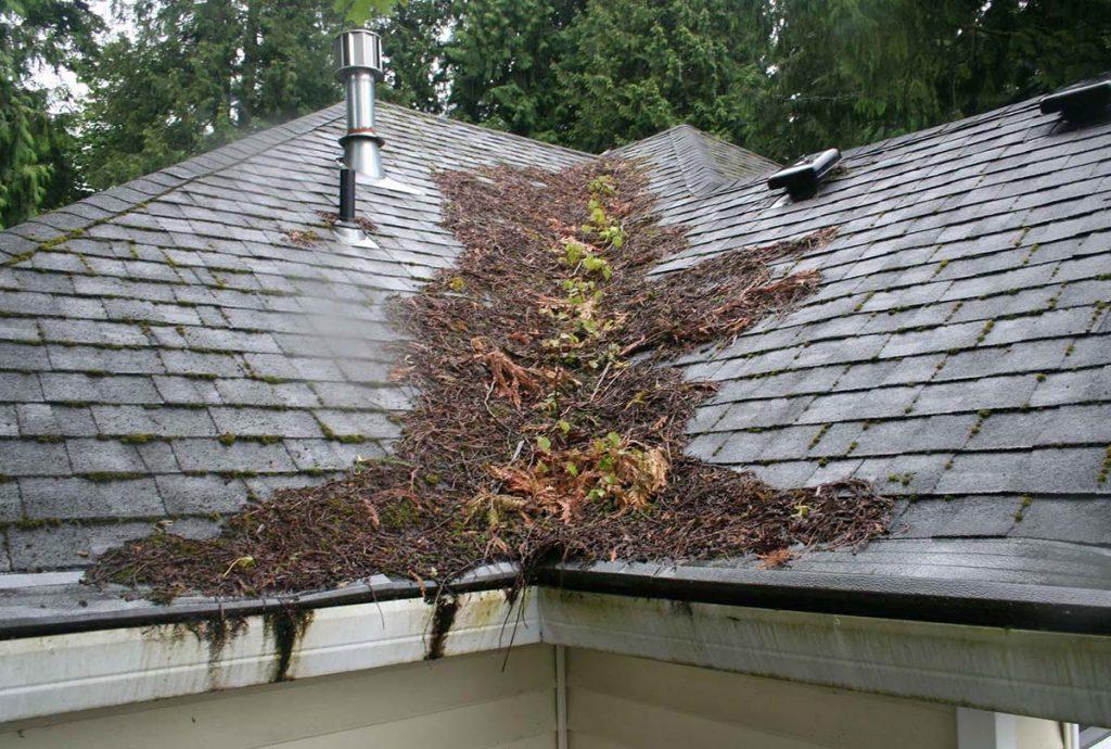 roof debris